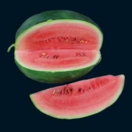 watermelon seed packet instructions