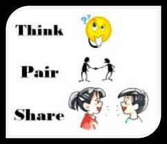 differentiated instruction structure choice selections-pair share