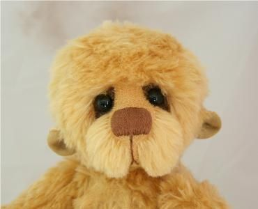 make your own teddy bear instructions