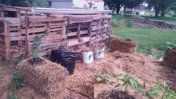potato barrel planter instructions