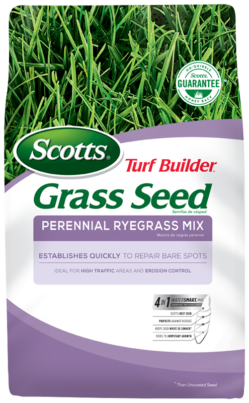 scotts lawn seed instructions