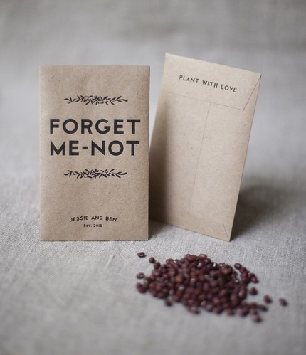 instructions for planting forget me not seeds