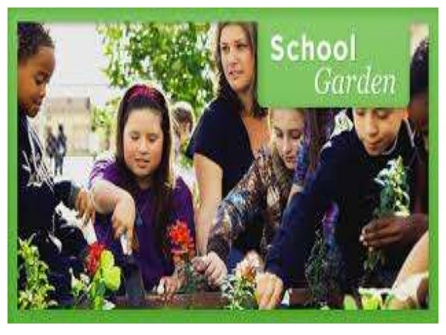 instructional environmental assessment accommodation