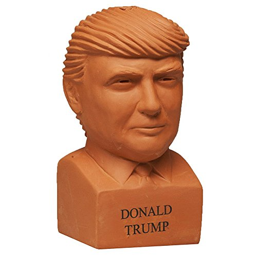 trump chia pet instructions