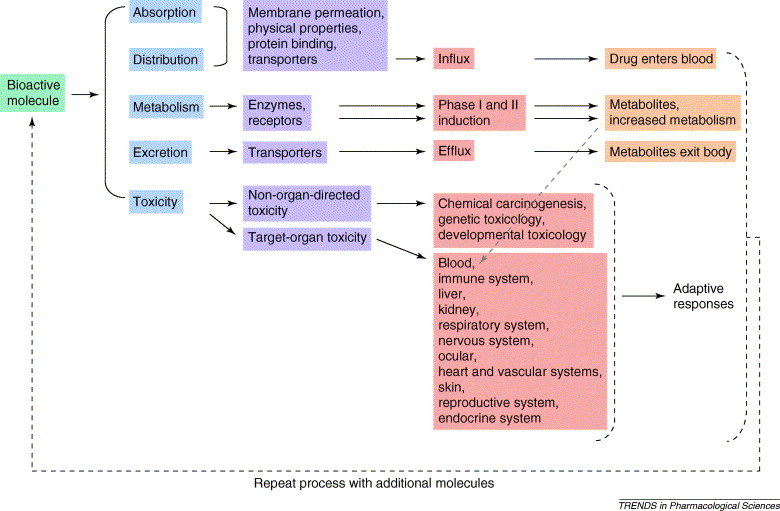 current drug metabolism instructions for authors