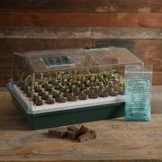jiffy seed starter trays instructions