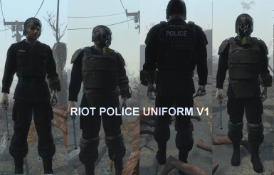 riot shield instructions clear