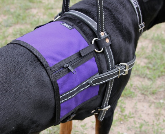 sure fit dog harness instructions