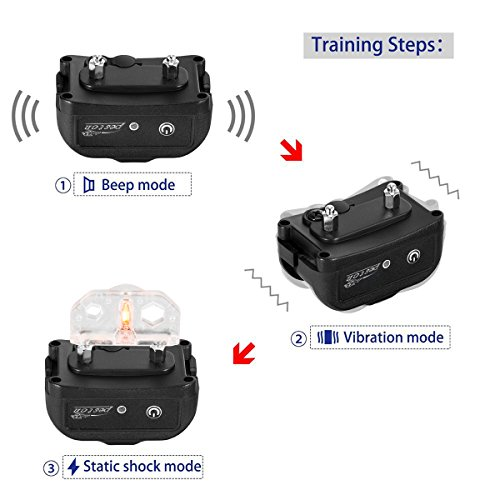 peston dog training collar instructions