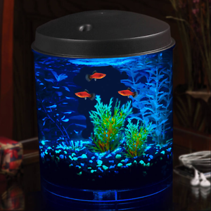 penn plax prism nano aquarium kit instructions